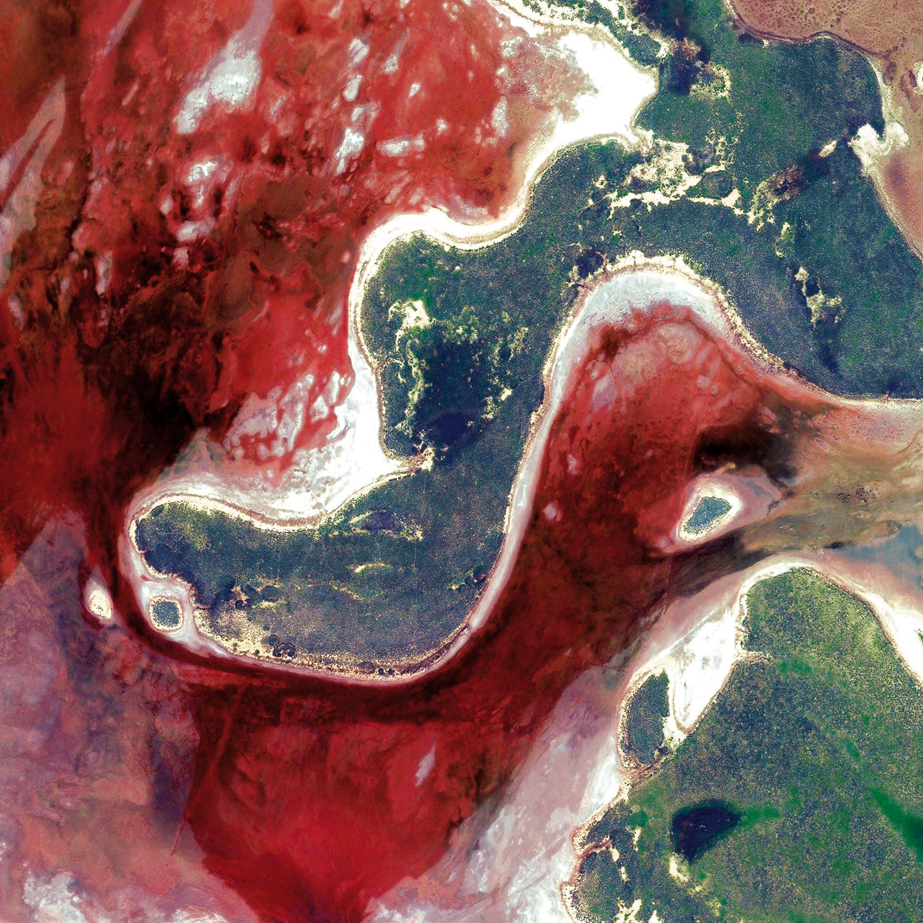Earth Portrait 22 Australia, 2013, cm 70×70, 1/9