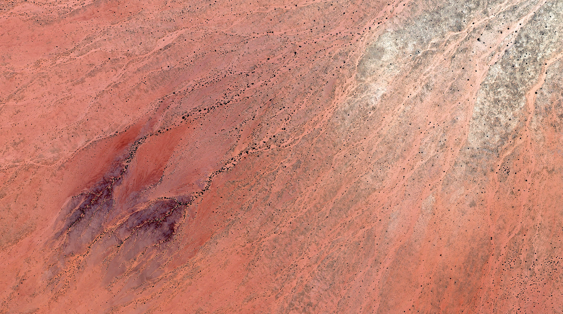 WLP 18 Sudan, 2016, cm 67×120, 1/9