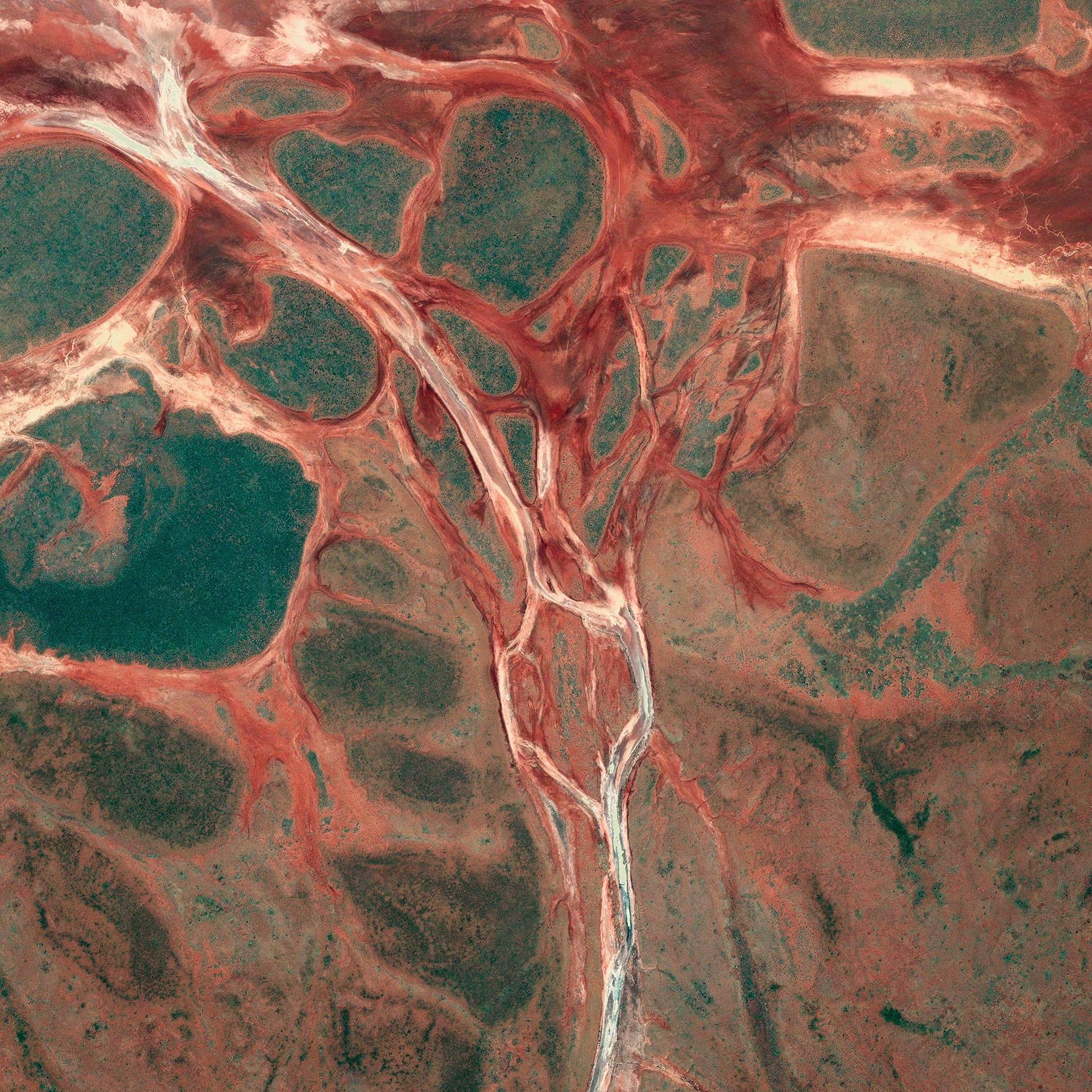 WLP 20 Australia, 2013, cm 60×60, 1/9