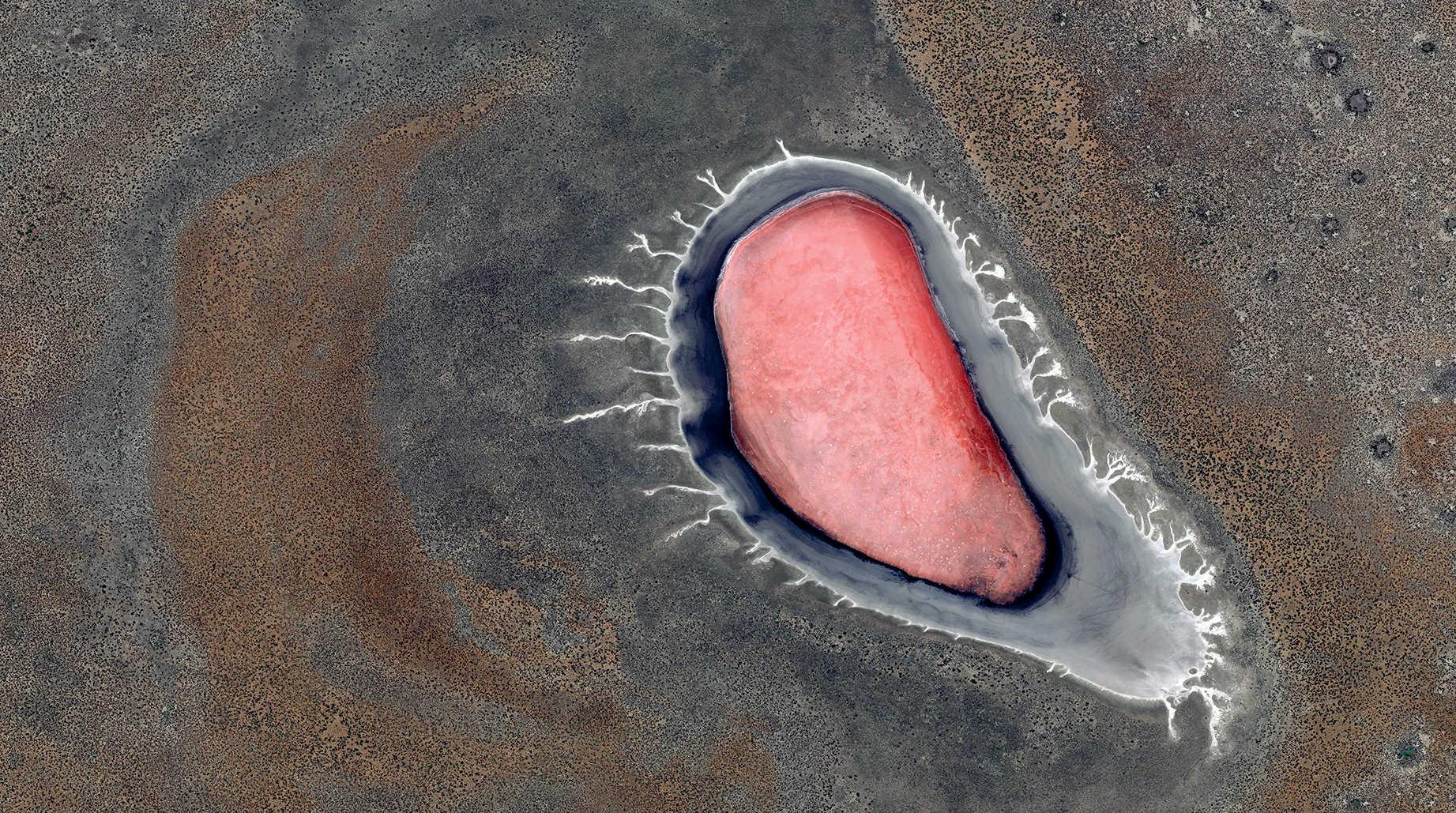 WLP 28 Namibia, 2015, cm 67×120, 1/9